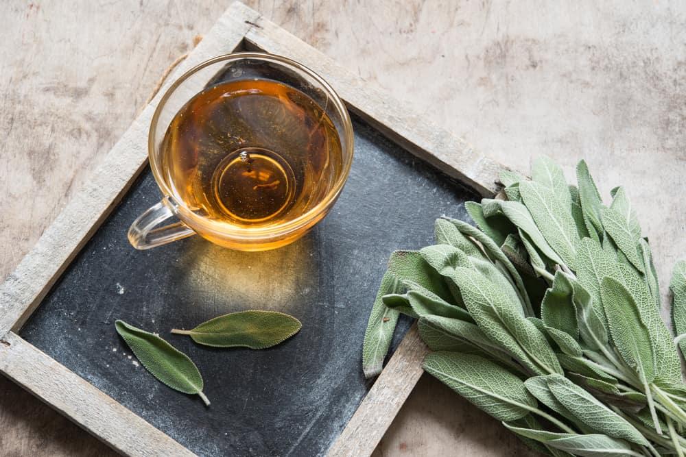 Jenis Obat-Obatan Herbal Dan Ilmu di Baliknya